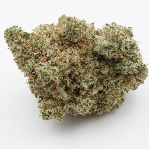gorilla-glue-no4-buds2go-3