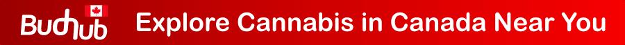 budhub-canada-explore-cannabis-canada-near-you