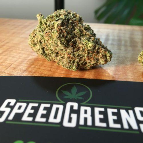 speedgreens-tcb-burmese-kush-gallery-3