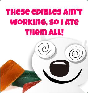 strong-edibles-canada-meme