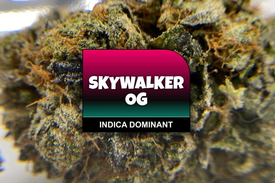 Skywalker OG Strain Review & Information